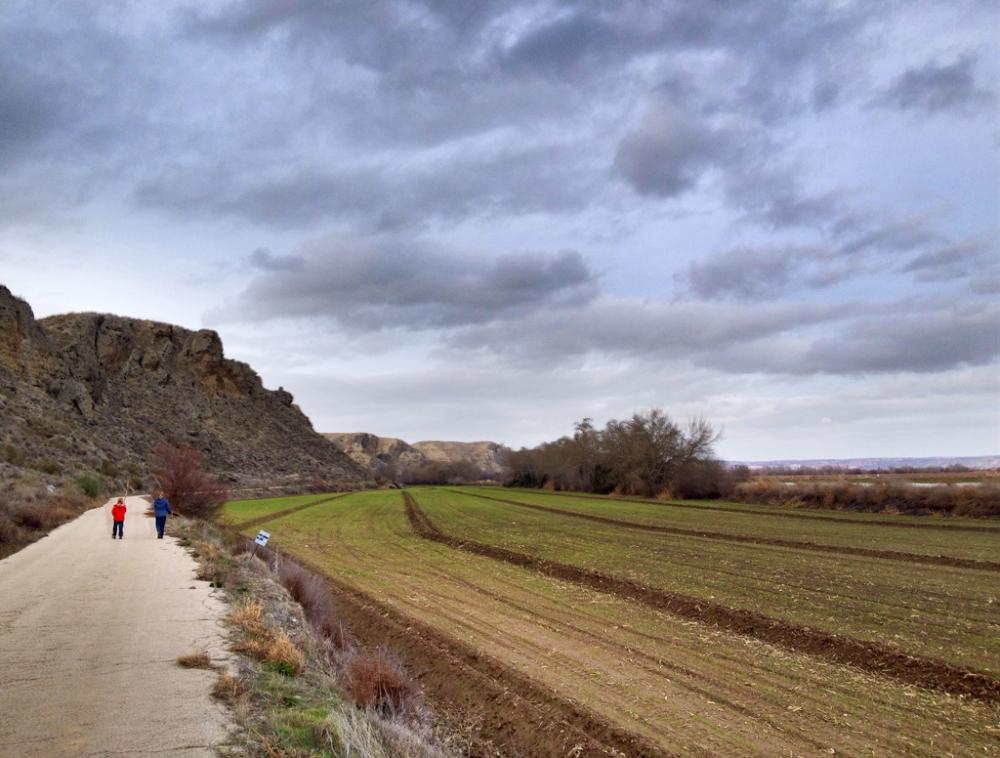 Camino de la Presa del Rey, San Martín de la Vega, Madrid (3/6)