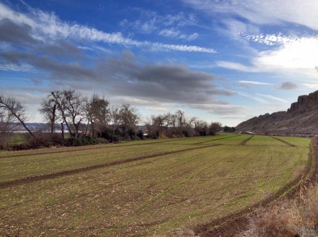 camino_presa_del_rey4