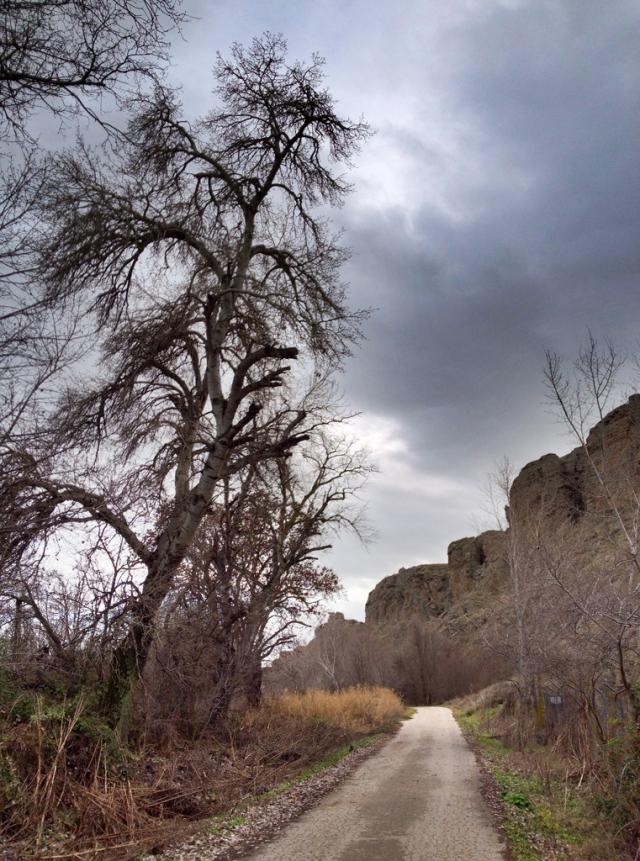 camino_presa_del_rey8