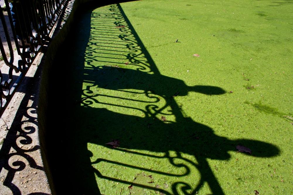 Instantáneas del Parque del Capricho (2/6)