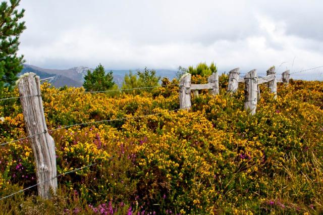 Vallado natural (Alrededores del Pico de Murias).